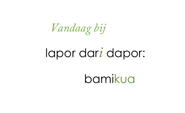 Uit de keuken van Lapor dari Dapor: bami kua